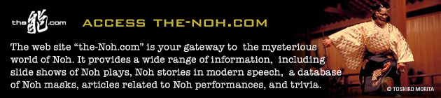 the-noh.com web site